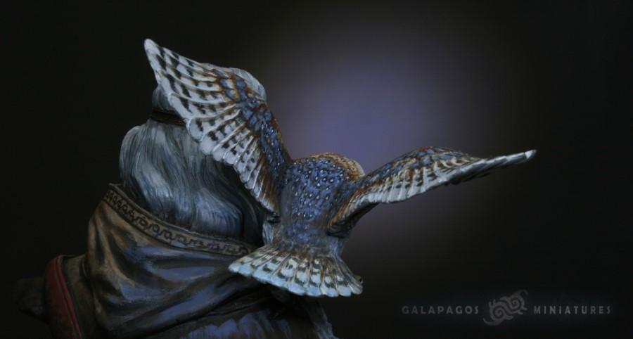 owl_closeup.jpg
