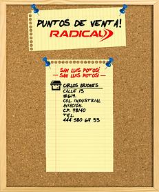 CARLOS BRIONES.png