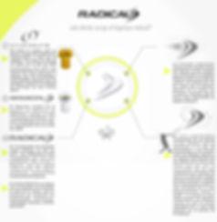 Infografia logotipo Radical.jpg