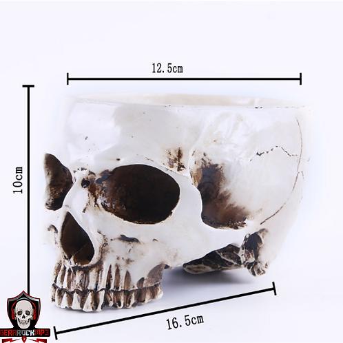 Porta Treco Cranio