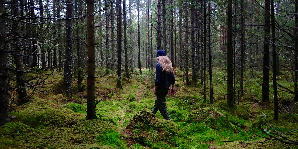 Past Event – Free Forest Bathing