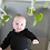 Thumbnail: Plant Chandelier
