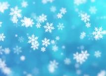Zrzut ekranu 2020-10-27 o 11.47.08.png
