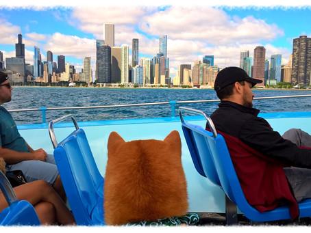 犬も一緒に乗れる!シカゴ川~ミシガン湖周遊クルーズ