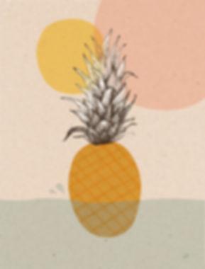 Ananas2.jpg