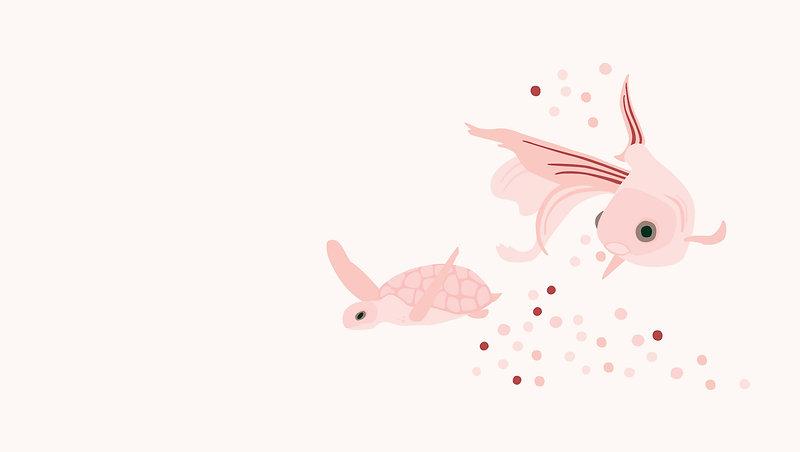 fish_illustration.jpg