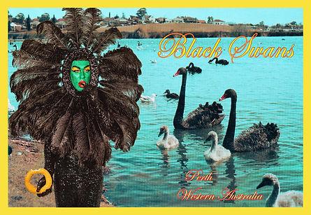 BLACK SWAN COMPILE v2.jpg