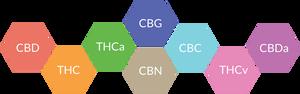 What is CBD (Cannabidiol)?