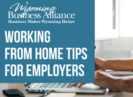 WBA provides working from home tips for employers