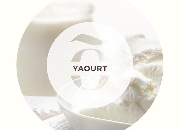Glace au yaourt comme en Italie - Exquissimo, l'art de la glace