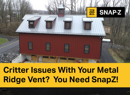Critter Issues With Your Metal Ridge Vent?  You Need SnapZ!