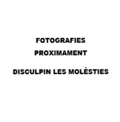FOTOS PROXIMAMENT - DISCULPIN LES MOLÉST