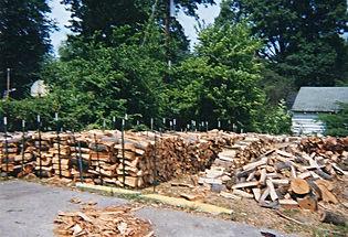 2001 Tree Service Louisville