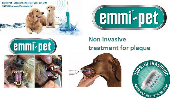 Emmi Pet dog dental treatment for removal of plaque