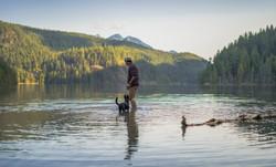Dog Companion Lake