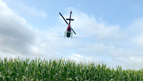 Fungicide application on local corn fields