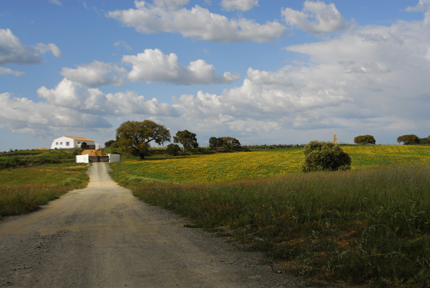 6-vista casa agricola