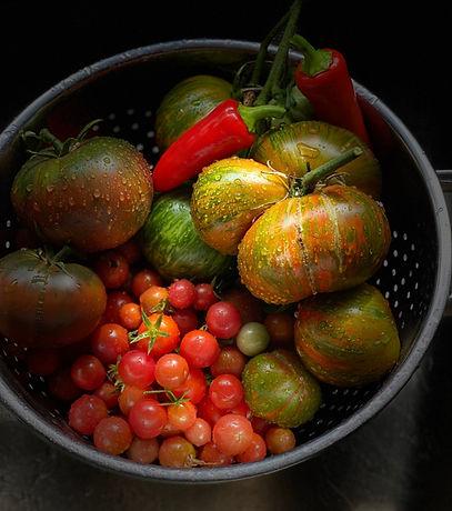 tomatoes dark.jpg