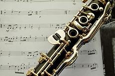 Scoala de Muzica, Cursuri Lectii individuale de Pian Vioara pentru copii Bucuresti, sector 1, sector 2