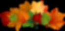 Autumn-Leaves-PNG-Transparent-Image.png