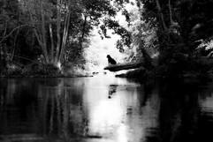 12.Dordogne