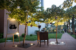 Pedido de Casamento Jardim externo