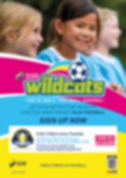 Wildcats poster.png
