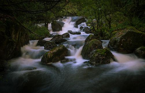 Fotoprosjekt Sveiven-7355.jpg
