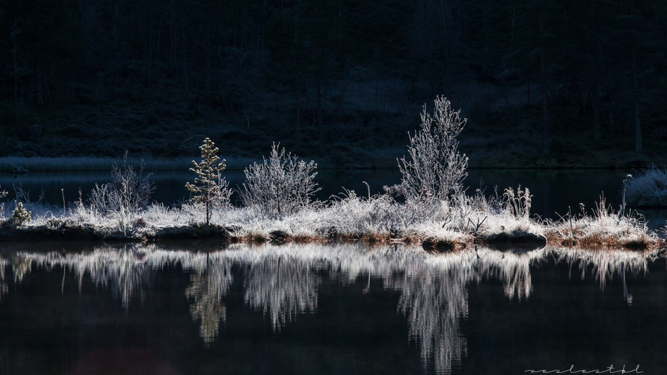 Frosty morning Haukeli