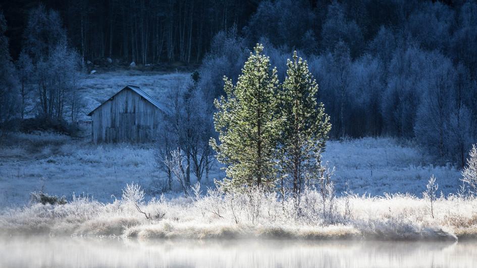 Frosty shed