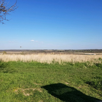 Spring 2021 Indianola Apiary - Land in CRP