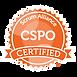 SAI_BadgeSizes_DigitalBadging_CSPO.png