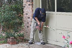 termites, termite treatment, inspections