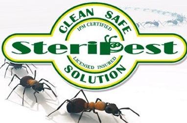 logo w ants.jpg