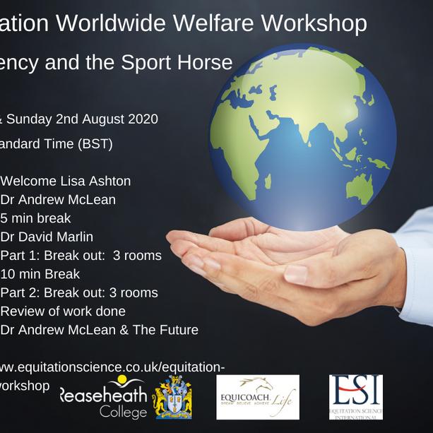 Equitatio Welfare Workshop 2020
