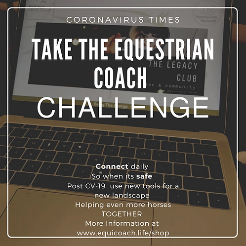 The Equestrian Coach Challenge
