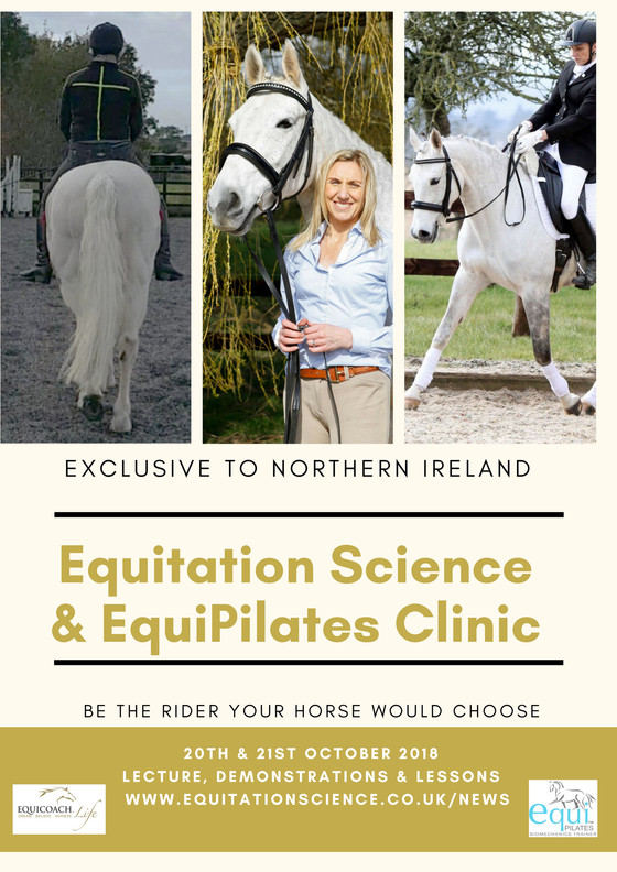 Equitation Science & Northern Ireland CLINIC