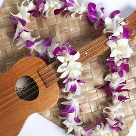 Purple White Orchid Lei with Guitar.jpg