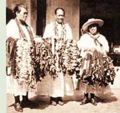tradition-leisellers (1).jpg