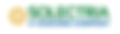 Solectria Logo.png