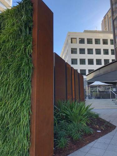 Coreten & Green Walls - Mitchell Street Plaza