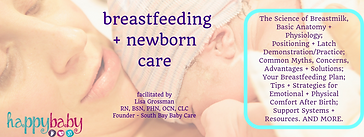 breastfeeding workshop (6).png