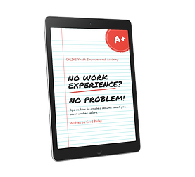 No Experience No Problem 3D Cover.png
