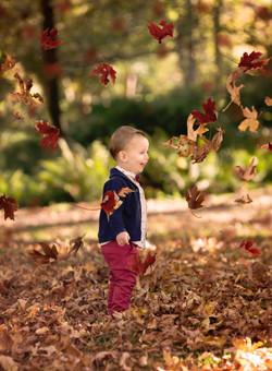 Fall session