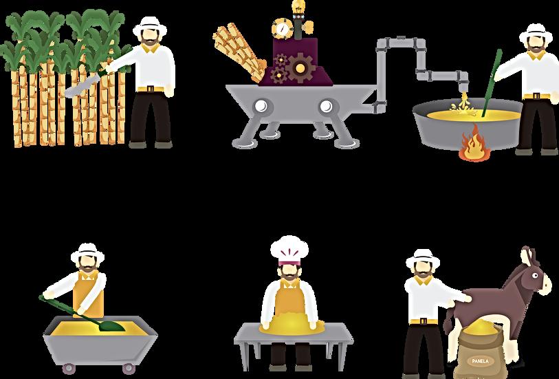 Herstellung der PANELA