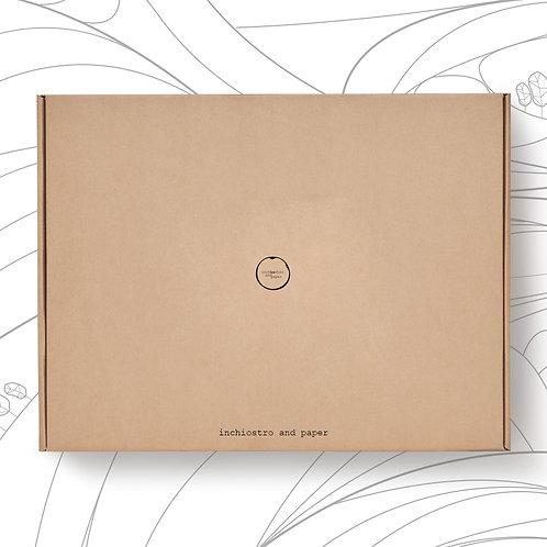Ocean & Terra Box  🎁