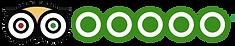 TripAdvisor 5 star review