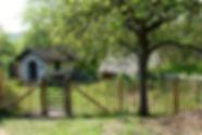 fermedubec-DSC_5264-768x513.jpg