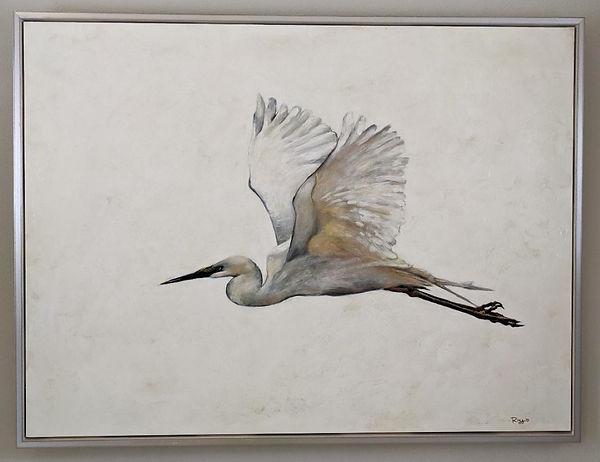 crane in flight 1.jpg