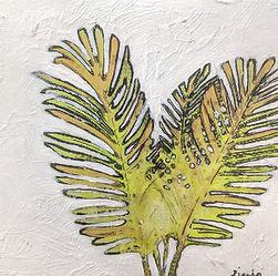 areca palm 4x4.jpg